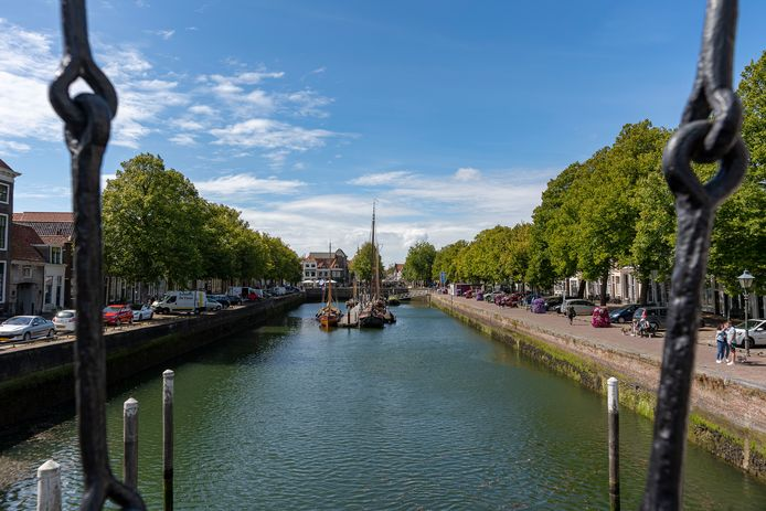 De kademuren van de Oude Haven moeten gerestaureerd. Daarvoor zouden de meeste bomen rondom moeten wijken. De gemeente wil ze vervangen door acht jaar oude exemplaren.