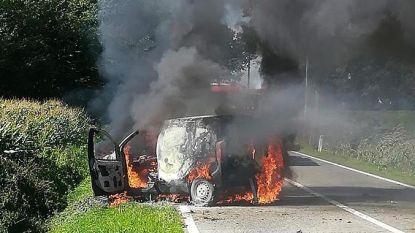Auto brandt uit na klap tegen boom