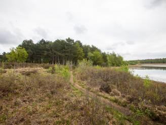 """28 hectare bos in De Maten moet wijken: """"Open natuur herstellen"""""""
