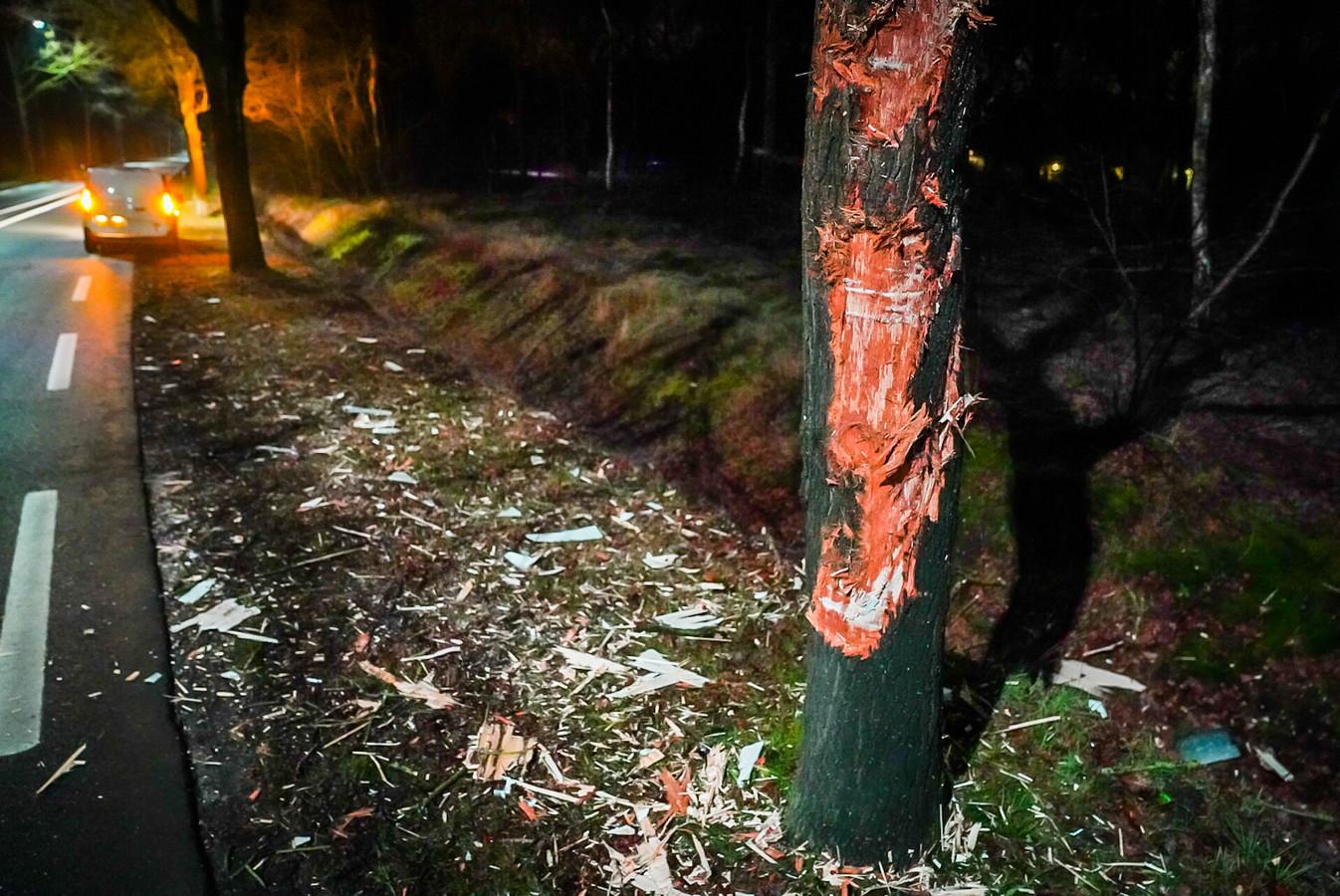 Ook de boom raakte zwaar beschadigd.
