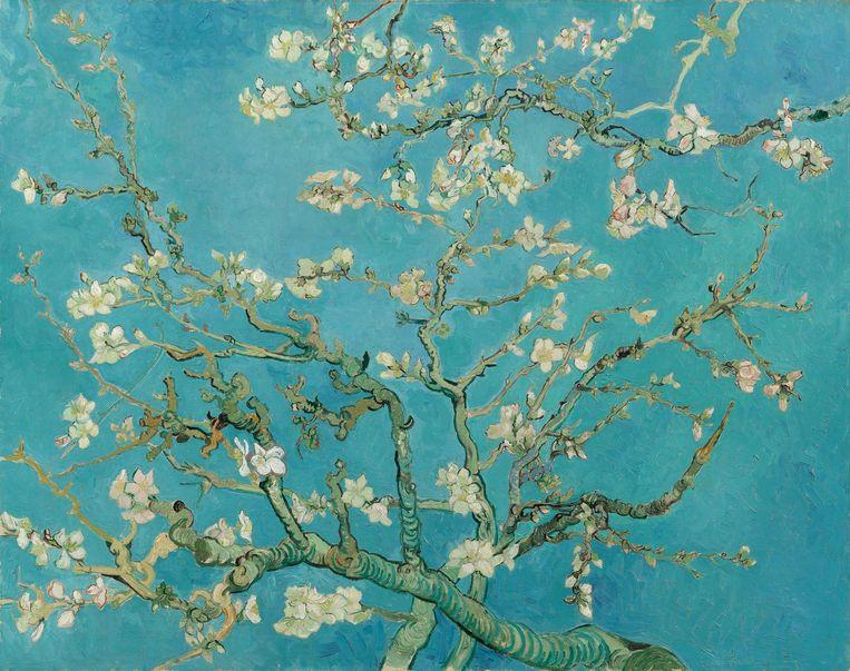 null Beeld Vincent van Gogh