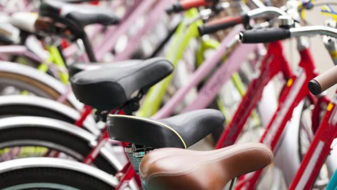 Nieuwe fietshaven voor meer dan 1.100 fietsen en extra groen als sluitstuk heraanleg stationsomgeving