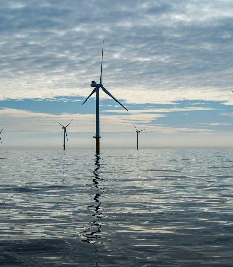 Hoe er meer windmolens op de Noordzee gebouwd worden zonder de natuur in de weg te zitten