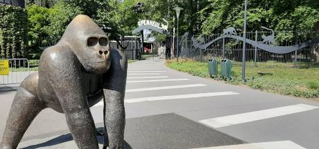 Apenheul en Julianatoren waarschuwen bezoekers na datalek: 'Wees alert op telefoontjes en mails'