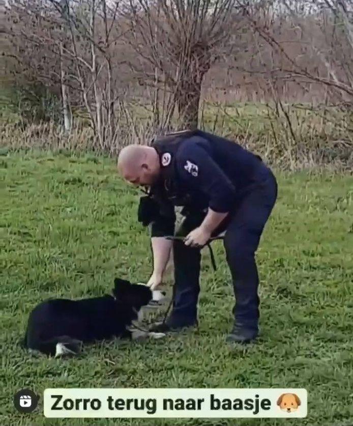 De Gentse politie heeft er een nieuwe vriend bij.