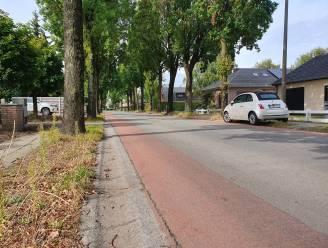 """Bewoners Brouwerijstraat starten petitie: """"Straat en voetpad vernieuwen, en trager verkeer!"""""""