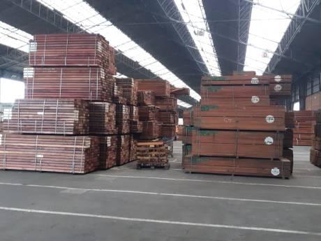 Rotterdamse politie vindt recordhoeveelheid 'fout' hout na maandenlang onderzoek bij importeur