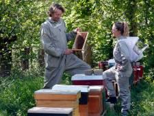 Ieder kantoordak krijgt een bijenkast als het aan deze imker in Schoonrewoerd ligt