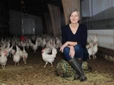 Pluimveehouders in kippenhoofdstad Barneveld houden hart vast om vogelgriep: 'Nee, niet weer!'