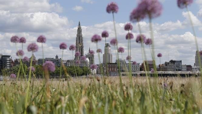 Tot 55 procent minder CO2-uitstoot tegen 2030: Antwerpen wil miljarden mobiliseren voor het klimaat