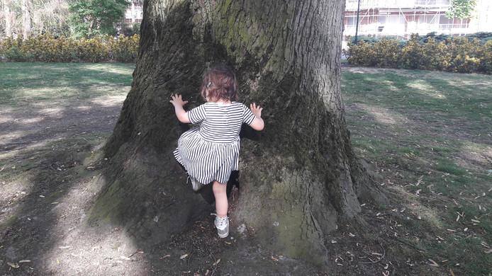 In een park is van alles te ontdekken.