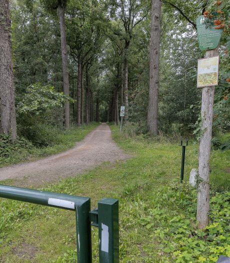 Plan om fietspad door het bos te asfalteren valt slecht in Mierlo-Hout maar natuurplatform ziet geen bezwaar