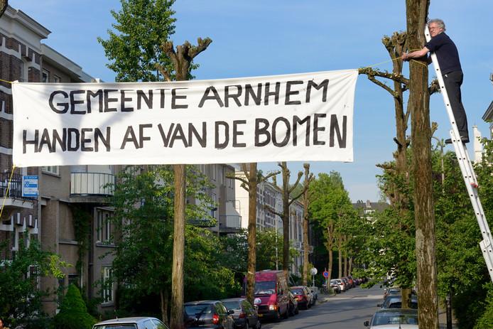 Mei 2014: bewoners van het Spijkerkwartier protesteren tegen de gemeentelijke plannen om bomen in de wijk te kappen. Nu kunnen ze gratis een boom afhalen bij de gemeente Arnhem.
