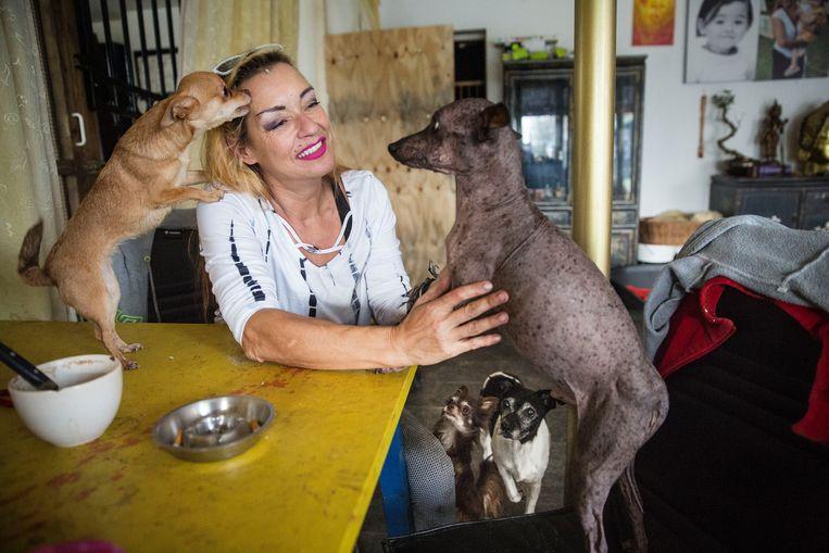 Maria Moria geeft met haar stichting Zorgeloos Dierenleven dieren een tweede kans.  Beeld