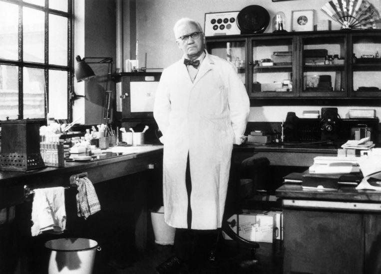 Arts en microbioloog Alexander Fleming in zijn werkkamer, rond 1950.  Beeld Getty