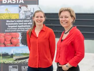 """UHasselt en ILVO testen bodemverbeteraar van organische afvalstoffen in aardbeiteelt: """"Hét ecologisch alternatief voor potgrond"""""""