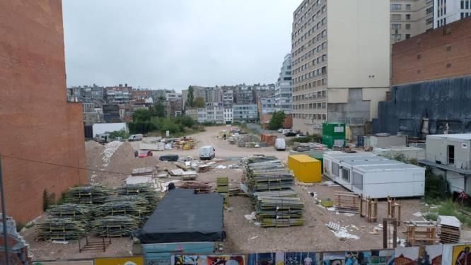 College legt plan voor 'stadskanker' Pelikaanstraat voor aan gemeenteraad: Antwerpenaren kunnen zich vanaf augustus uitspreken