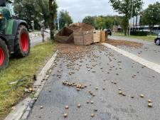 Trekker met aardappelen kantelt in Winterswijk: rondweg bezaaid met piepers