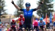 Riis-effect meteen merkbaar bij NTT: Giacomo Nizzolo haalt nul weg in vijfde rit Tour Down Under