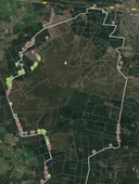 Een kaart van de tellingen op de mtb-route op de Sallandse Heuvelrug in 2020. Groen zijn de slachtoffers onder zandhagedissen, bruin zijn de hazelwormen.