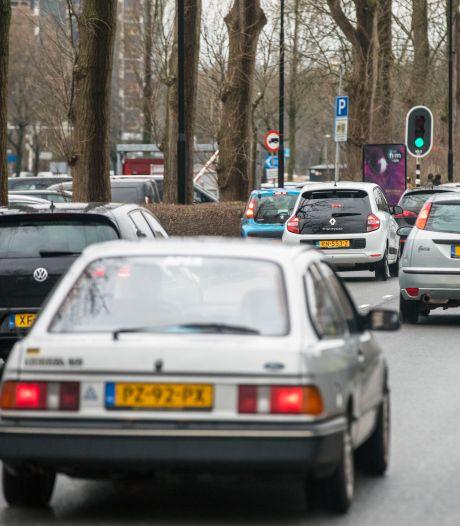Bestuurder Zuid-Holland ontkent plannen grootschalige bomenkap, die ze zelf openbaarde