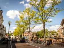 Soepeler bomenbeleid in Geldrop-Mierlo: struik in plaats van boom