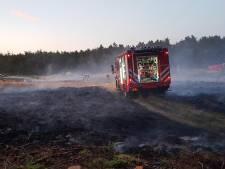 Verdachte brandstichtingen landgoed Rechteren op vrije voeten
