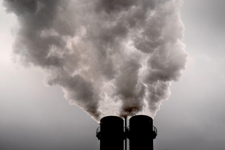 Met de komst van e-boilers is de bouw van een biomassacentrale nog niet van de baan. Beeld AP