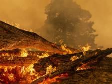 Un incendie de forêt atteint une superficie record en Californie