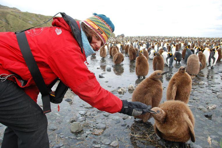 Op de Zuidpool in 2011, de tweede keer dat zij Antartica bezocht. Beeld