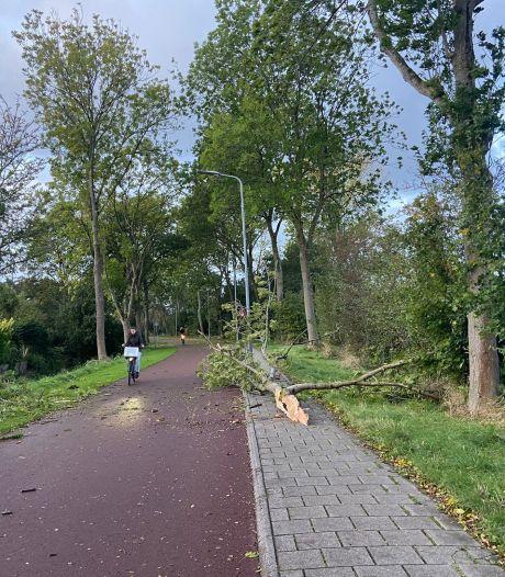 Storm in Zeeland: windstoten tot 106 kilometer per uur, brandweer heeft handen vol aan meldingen
