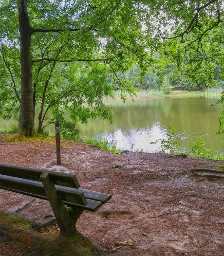 Baanbrekend bosplan Eersel: mooi, goed voor het klimaat en kostbaar