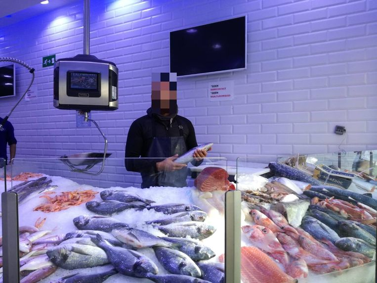 De familie A. had op een gegeven moment vijf viswinkels in het Antwerpse, waaronder op het Kiel, in de Handelstraat en in Berchem. Beeld rv