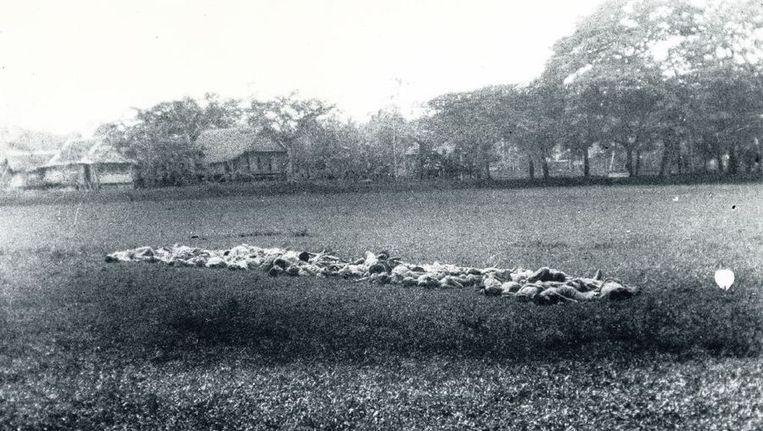 Volgens het verslag achterop deze foto, haalde de eenheid van Vermeulen na het executeren van dertig mensen, nog eens 24 man, die in een kolonne van twee naar het plein werden gebracht. Zij moesten knielen naast de lijken en werden met een stengun doodgeschoten. Beeld Nederlands Instituut Militaire Historie