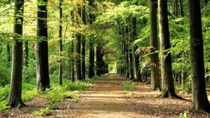 Reglement Bruwaanbos en Parochieveldbos vernieuwd
