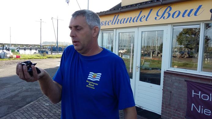 Mosselkweker Jan Bout met zijn Zeeuws Geeltje