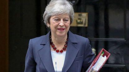 """Nog geen witte brexitrook: """"EU-onderhandelaar krijgt meer tijd"""""""