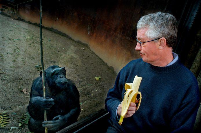 Jaloers? Met een banaan trekt De Waal de aandacht van een chimpansee in de dierentuin van Barcelona, in 2006.
