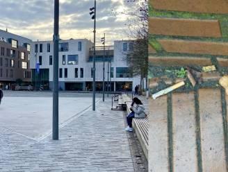 """Hangjongeren teisteren centrum Kapellen: """"Sommige buurtbewoners durven hun kinderen niet meer laten buitenkomen"""""""