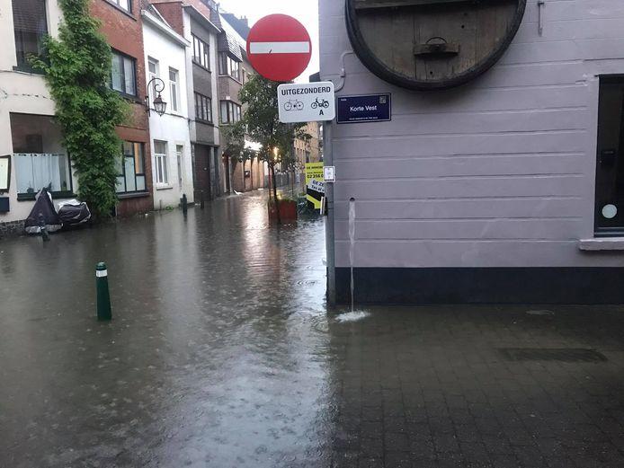 Vanaf 20 uur donderdagavond liep het kruispunt van de Korte vest en de Bergensesteenweg onder in Halle.