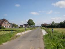 Twee koeien dood in Bunschoten, onderzoek naar verband met verontreinigde grond