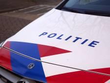 Man uit Vogelwaarde berooft man in Utrecht van laptop