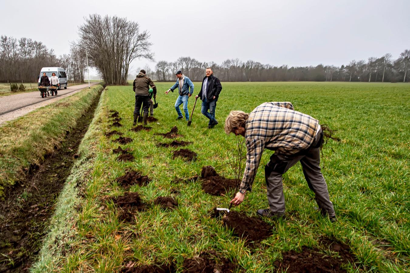 In samenwerking met Brabant Water wordt ter hoogte van Vierhoeven het allereerste voedselbos van Roosendaal aangeplant.  Ontwerper Bastiaan Rooduijn (rechts voor) van Coöperatie Ondergrond, aan de slag met eerste aanplanting.