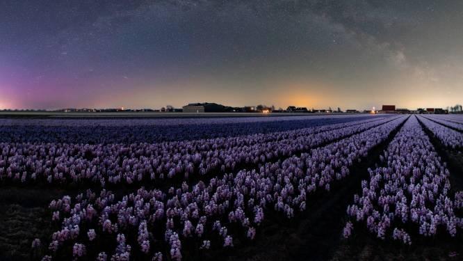 Vorig weekend kon je het noorderlicht zien in Nederland, en binnenkort misschien ook in België