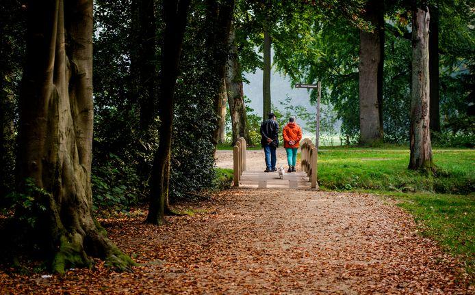 Wandelen in het bos, foto ter illustratie.