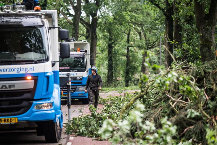 De stormschade wordt opgeruimd bij Park Veluwezoom, waar ook de populaire Posbank ligt.