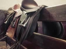 Paardentrainer (41) had seks met 13-jarige pupil tijdens logeerpartijtjes: 'Ik walg er zelf ook van'