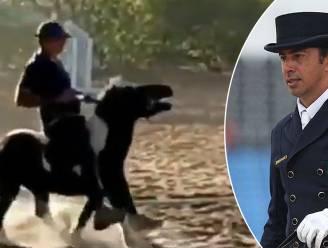 """Olympische dressuurruiter drie jaar geschorst na mishandeling van pony: """"Het dier moest gecorrigeerd worden"""""""