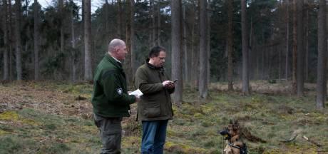 Na aangevreten reelkalfjes en dode dassen doen boswachters nú een oproep: 'Houd de hond aan de lijn'