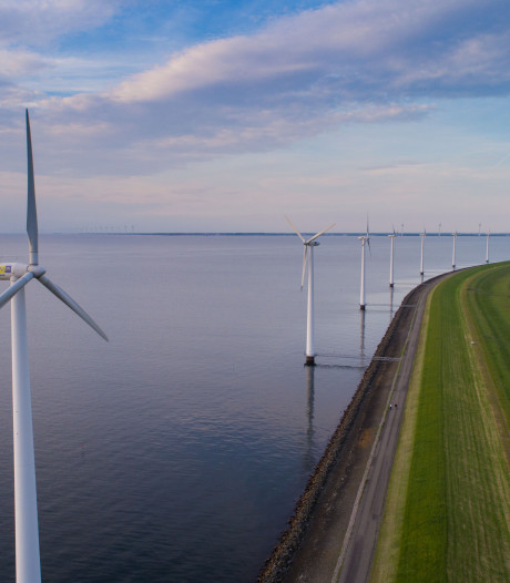 Zijn windmolens in IJsselmeer schadelijk voor vogels?